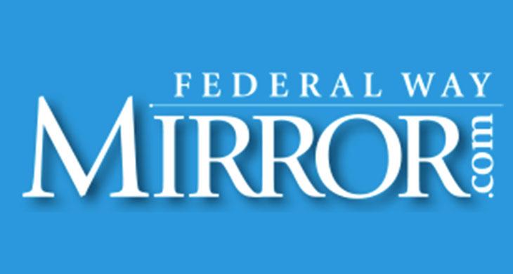 FW-Mirror