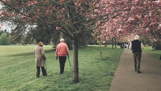 Three older adults are seen walking through a park in the spring