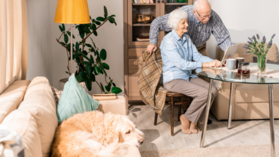 An elderly couple is seen using their computer in their living room while a golden retriever lays on the couch