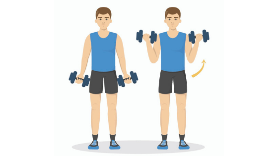 A vector image of a man demonstrating a bicep curl